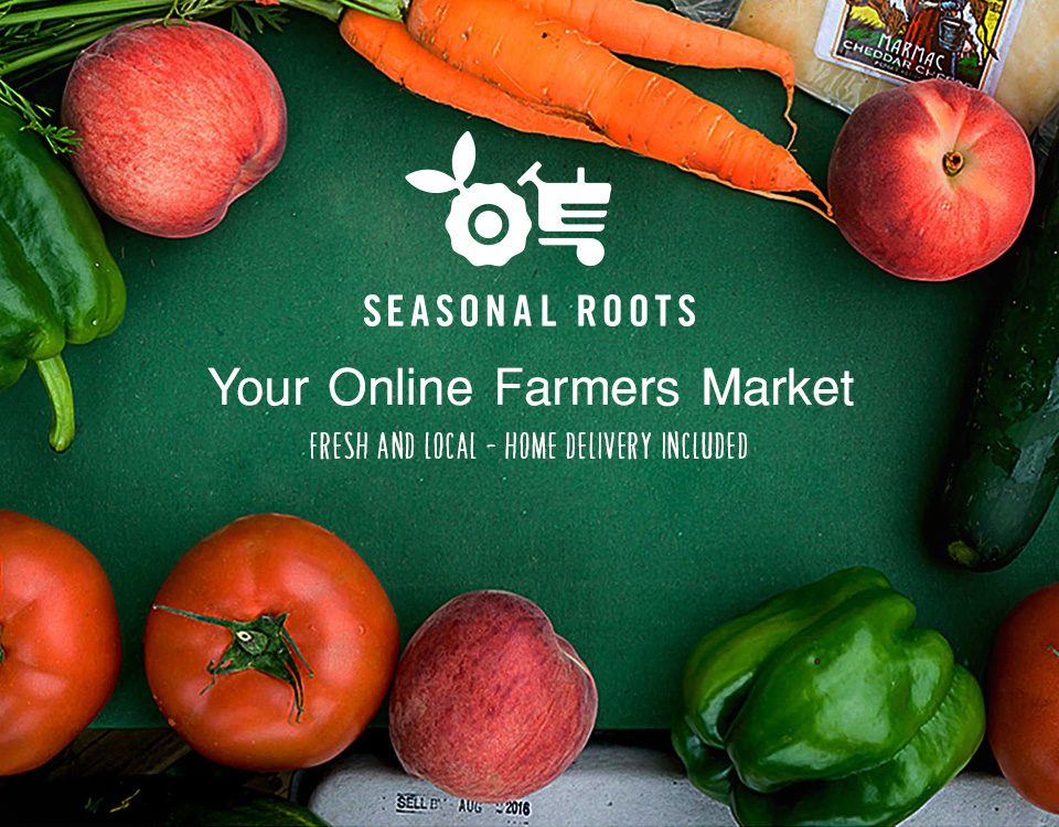 SeasonalRoots - Grocery Delivery Startup